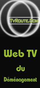 web-tv-demenagement